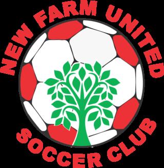https://www.newfarmsoccer.com.au/wp-content/uploads/2019/06/Club-Logo-png-file-320x327.png